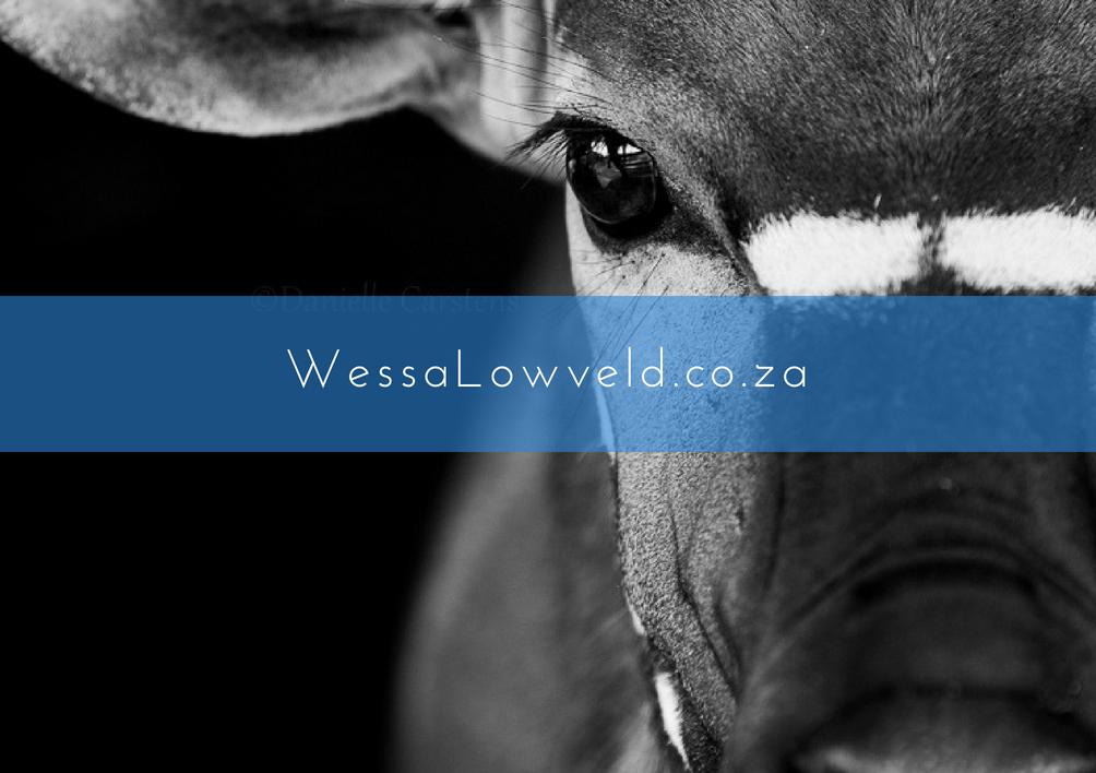 Wessa website